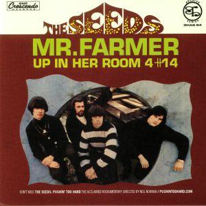 SEEDS - Mr Farmer