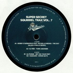D'AMBROSIO, Bobby/DJ MES/DJ FUDGE/HAZZARO - Super Secret Squirrel Trax Vol 7 (Alaia & Gallo remix)