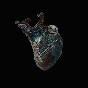 BLAKE, Seamus - Guardians Of The Heart Machine