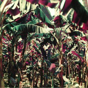 DAMPE - Peach Shuffle EP