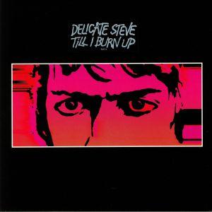 DELICATE STEVE - Till I Burn Up