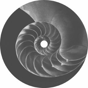 DER - 432 Hz