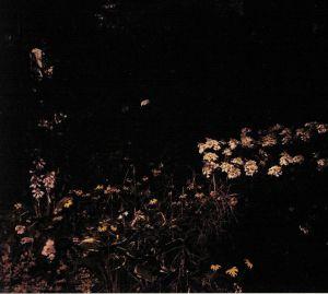DAVACHI, Sarah - Pale Bloom