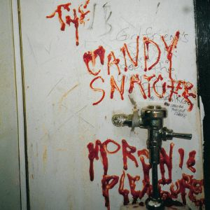CANDY SNATCHERS, The - Moronic Pleasures