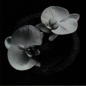 PATTON, Mike/JEAN CLAUDE VANNIER - Corpse Flower