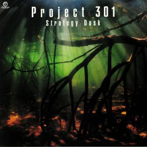 PROJECT 301 - Strategy