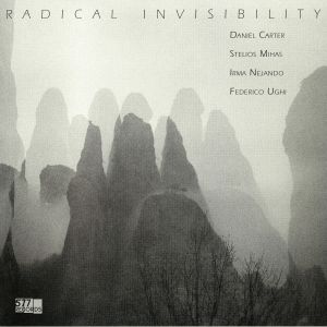 CARTER, Daniel/STELIOS MIHAS/IRMA NEJANDO/FEDERICO UGHI - Radical Invisibility