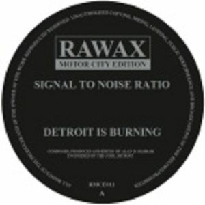 SIGNAL TO NOISE RATIO - Detroit Is Burning
