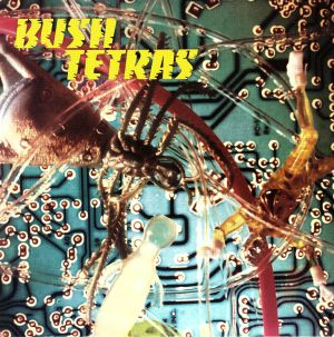 BUSH TETRAS - There Is A Hum