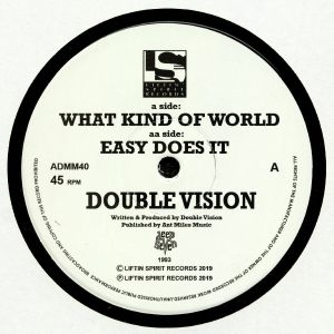 DOUBLE VISION - What Kind Of World