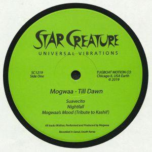 MOGWAA - Till Dawn