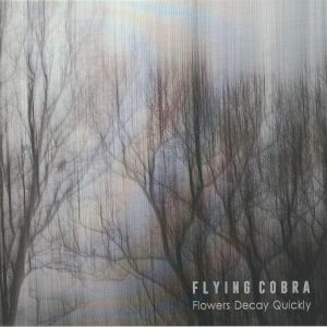 FLYING COBRA - Flowers Decay Quickly
