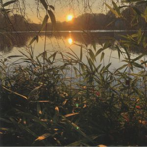 THORPE, James/GREG FOAT - Photosynthesis