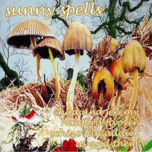 CHAD & JEREMY/SCHIZO FUN ADDICT/HANFORD FLYOVER/US & THEM - Sunny Spells