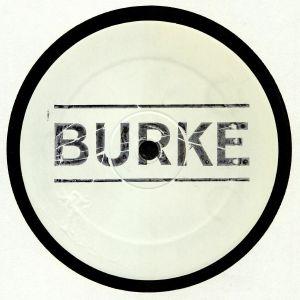 BURKE - Blue Tongued Skink