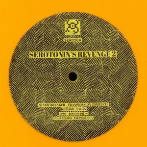 STATIC BREAKER/KREGGO/SIVIYEX/NEXUS 23/BPMF/JOHN SELWAY/POINTSMAN/SYNAPSE - Serotonin's Revenge 2
