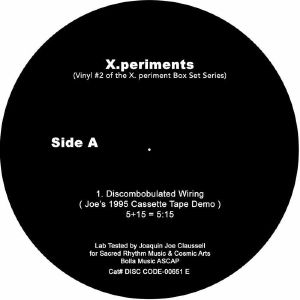 X  PERIMENTS - Vinyl 2 :Discombobulated Wiring
