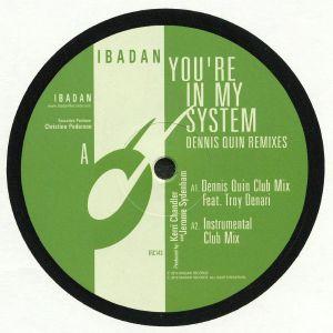 CHANDLER, Kerri/JEROME SYDENHAM - You're In My System: Dennis Quin Remixes