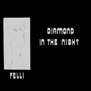 FELLI - Diamond In The Night