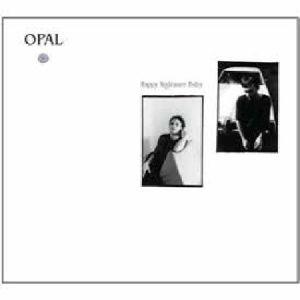 OPAL - Happy Nightmare Baby