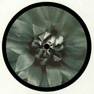 LARSSON/ECHO INSPECTORS/PIOK/DIB - BLUETEN 006