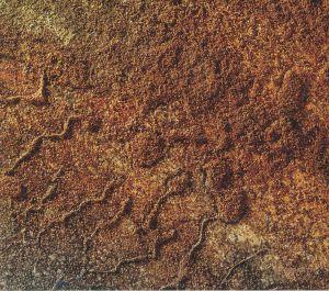 VARIOUS - Velvet Desert Music Vol 2