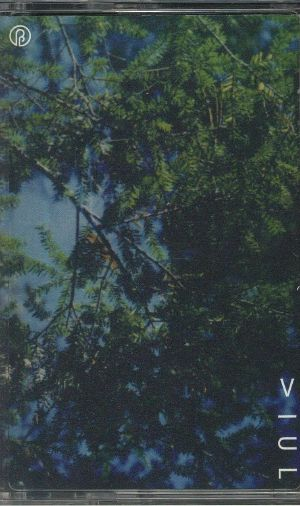 VIUL - Outside The Dream World
