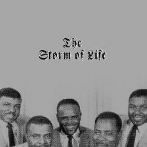 VARIOUS - The Storm Of Life