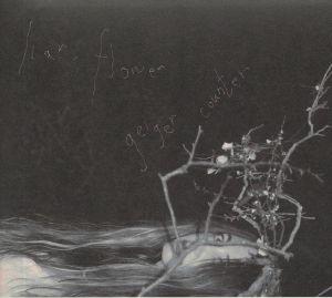 LIAR FLOWER - Geiger Counter