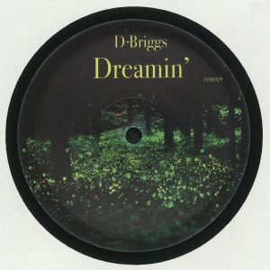 D BRIGGS - Dreamin'