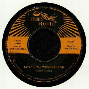 BURRO BANTON/THE 18TH PARALLEL - Living In A Wonderland