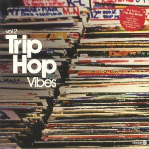 VARIOUS - Trip Hop Vibes Vol 2