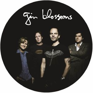 GIN BLOSSOMS - Live In Concert