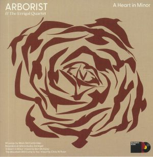ARBORIST/THE ERRIGAL QUARTET - The Mountain Will Come To You