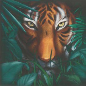 A VISION OF PANORAMA - Unique Tiger