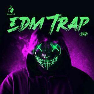 VARIOUS - EDM Trap