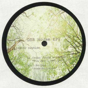 CEDAR SOUND WORKSHOP/D BRIGGS/ALFONSO BOTTONE/PACE YOSEF/MONCHAN - DSR House EP 1