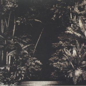 CRUZ, Nicola - Arpejos Da Floresta
