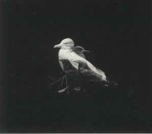 ENGEL, Clara/BRADLEY SEAN ALEXANDER - Ghost Bird