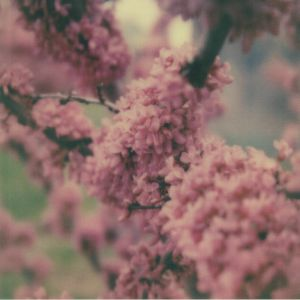 ZAKE/MARINE EYES - Unfailing Love
