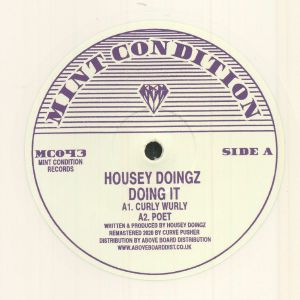 HOUSEY DOINGZ - Doing It (remastered)
