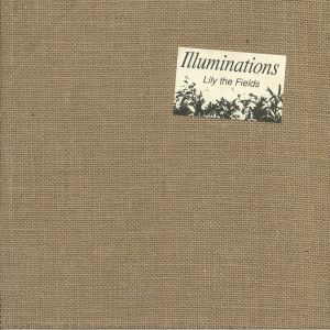 LILY THE FIELDS - Illuminations