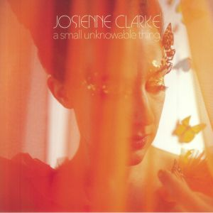 CLARKE, Josienne - A Small Unknowable Thing