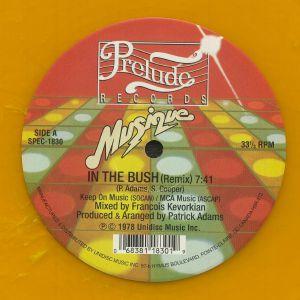 MUSIQUE - In The Bush