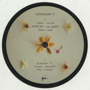 SOENNE/UNTITLED GEAR/BOAKSI/DJ BALATON/LB HONNE/TREN - Efflorescence II