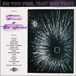 VARIOUS - Do You Feel That Way Too? A Tribute To The Sound
