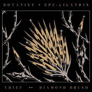 BOTANIST/THIEF - Cicatrix/Diamond Brush