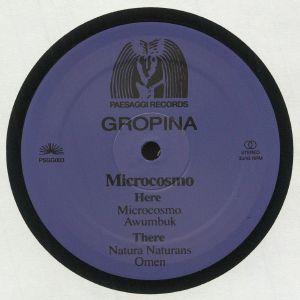 GROPINA - Microcosmo