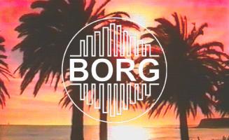 BORG LTD