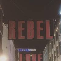 Rebel Soul: 20 from Rebel Towers